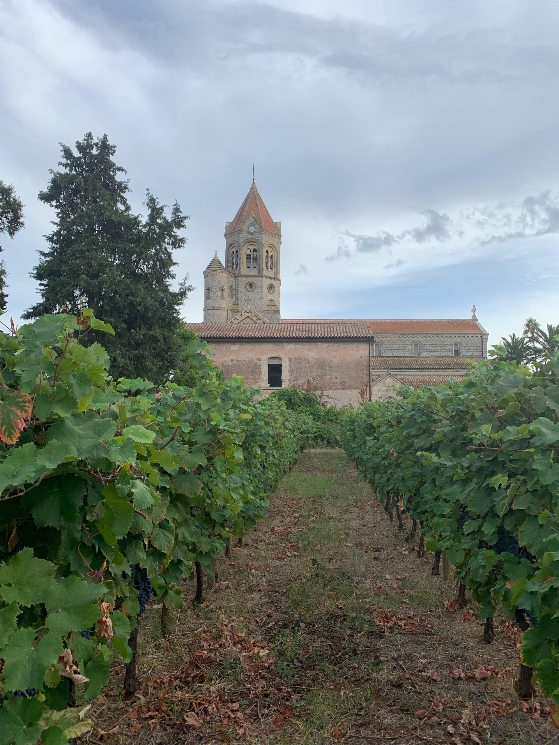 Stage-saint-honorat-adh-abbaye-de-lerins